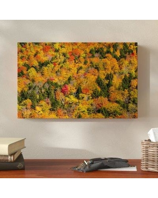 """Millwood Pines 'Vermonts Glory' Photographic Print on Wrapped Canvas MLWP5223 Size: 30"""" H x 47"""" W x 2"""" D"""