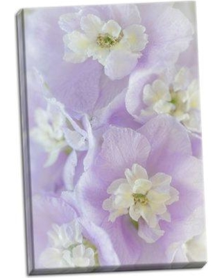 Ophelia & Co. 'Delphinium Blossoms II' Photographic Print on Wrapped Canvas CJ164598