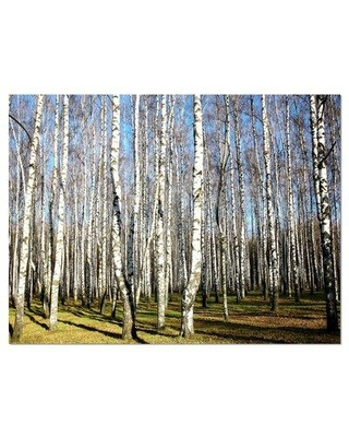 Find Big Savings On Design Art Sunny Autumn Birch Grove Photographic Print On Wrapped Canvas Canvas Fabric In Brown Blue Size 12 H X 20 W Wayfair