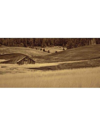 """Marmont Hill 'Brown Barn In The Blonde Grasses' by Don Schwartz Painting Print on Wrapped Canvas MH-MWW-SCWTZ-117-C- Size: 22.5"""" H x 45"""" W"""