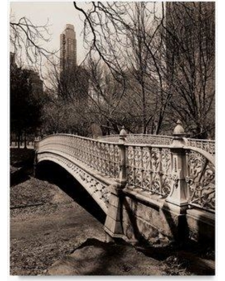 "Trademark Art 'Central Park Bridge 3' Photographic Print on Wrapped Canvas ALI20615-C Size: 32"" H x 24"" W"