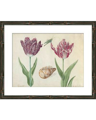 Highland Dunes 'Tulips' Framed Graphic Art Print HIDN9970