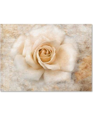 """Trademark Art 'Vintage Rose 5' Graphic Art Print on Wrapped Canvas ALI14227-C Size: 35"""" H x 47"""" W"""