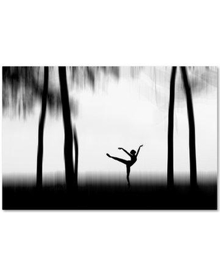 """Trademark Art 'Dancing' Graphic Art Print on Wrapped Canvas 1X02747-C Size: 22"""" H x 32"""" W"""