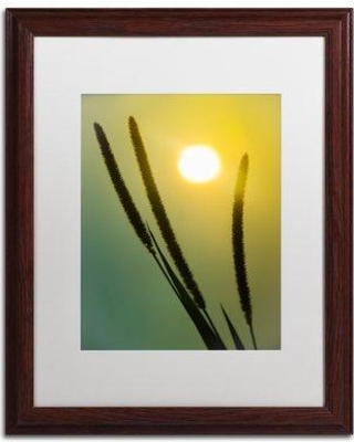 Don T Miss These Deals On Trademark Fine Art Silhouettes In Sunset Framed Photographic Print Canvas Fabric In Brown Orange Green Size 20 H X 16 W X 0 5 D Wayfair
