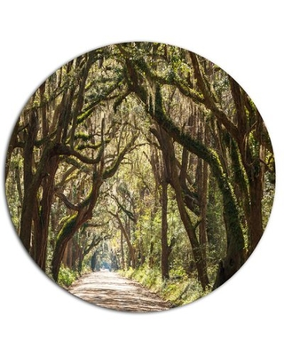 """'Trees Tunnel in Botany Bay' Photographic Print on Metal Design Art Size: 38"""" H x 38"""" W x 1"""" D"""