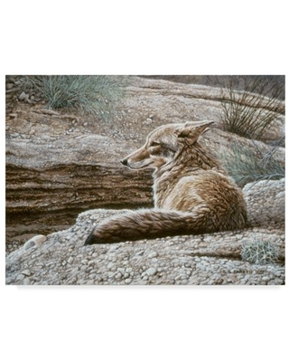 Trademark Fine Art 'Resting Coyote' Canvas Art by Ron Parker