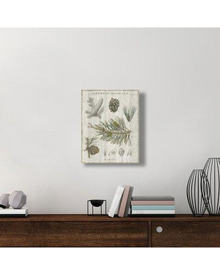 """East Urban Home 'Woodland Chart III' Graphic Art Print on Canvas UBAH6572 Size: 24"""" H x 20"""" H x 1.5""""D"""