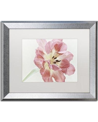 "House of Hampton 'Red Tulip' Framed Photographic Print HOHP9943 Size: 16"" H x 20"" W x 0.5"" D Frame Color: Birch"