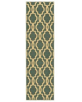 """Winston Porter Cabott Moroccan Looped/Hooked Trellis Teal Area Rug W001804849 Rug Size: Runner 2'8"""" x 18'"""