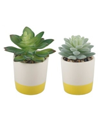 Set of 2 Artificial Plant Succulent IN CERAMIC COLOR BLOCK Pot - ONE-SIZE (Yellow)