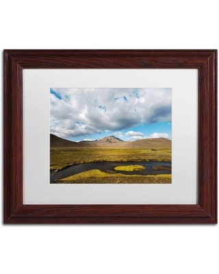 Trademark Fine Art 'Cloudy Day' Canvas Art by Philippe Sainte-Laudy, White Matte, Wood Frame
