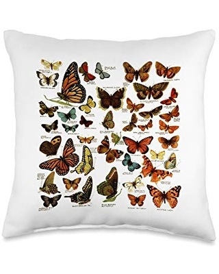 entomology butterfly American Vintage Print Butterfly Collection Entomology Throw Pillow, 16x16, Multicolor
