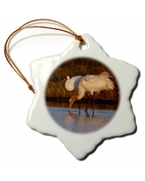 Check Out Deals On Sandhill Crane Birds Nebraska Snowflake Holiday Shaped Ornament The Holiday Aisle