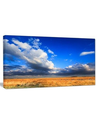 """Design Art 'Clouded Blue Sky Over Prairie' Photographic Print on Wrapped Canvas PT14802- Size: 16"""" H x 32"""" W x 1"""" D"""