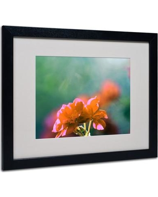 """Trademark Art """"Flowers & Sun"""" by Patty Tuggle Matted Framed Graphic Art PT0111- Frame: Black Size: 16"""" H x 20"""" W x 0.5"""" D"""