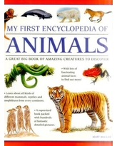 My First Encylopedia of Animals: A First Encyclopedia With Supersize Pictures