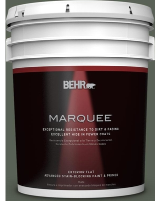 BEHR MARQUEE 5 gal. #PPU10-20 Pastoral Flat Exterior Paint and Primer in One