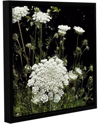 "ArtWall Kevin Calkins ""Queen Anne's Lace"" Gallery-Wrapped Floater-Framed Canvas"