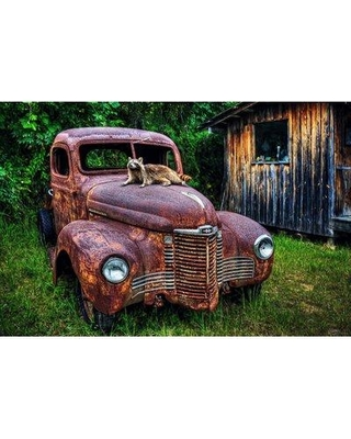 "Millwood Pines 'Rockys Rust Bucket' Photographic Print on Wrapped Canvas BI080355 Size: 18"" H x 27"" W x 1.5"" D"