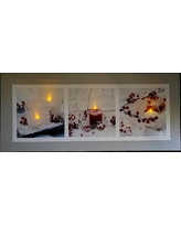 Northlight 11.75 in. x 27.5 in. LED Lighted Winter Frost and Berry Burst Christmas Canvas Wall Art, White