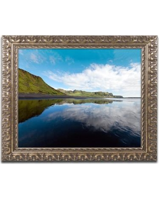 """Trademark Art Floating Mirror by Philippe Sainte-Laudy Framed Photographic Print PSL0708-G1114F / PSL0708-G1620F Size: 11"""" H x 14"""" W x 0.5"""" D"""