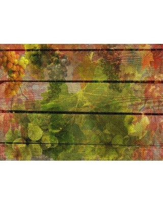 East Urban Home Wall Boards Cotton Green Area Rug X112354373 Rug Size: Rectangle 3' x 5'