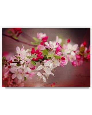 """Winston Porter 'When Spring is Pink' Graphic Art Print on Wrapped Canvas WNPO2263 Size: 12"""" H x 19"""" W"""