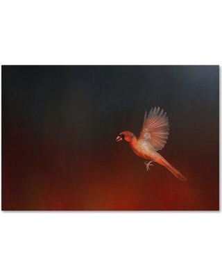 """Trademark Art 'I Wish I Could Fly - Cardinal 1' Graphic Art Print on Wrapped Canvas ALI14341-C Size: 30"""" H x 47"""" W"""
