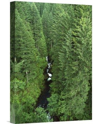 """East Urban Home Oregon Mt Hood National Forest Columbia Gorge 'Oneonta Creek' Photographic Print on Wrapped Canvas NNAI3860 Size: 36"""" H x 24"""" W"""