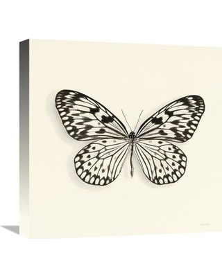 """East Urban Home Butterfly VI' Graphic Art Print on Canvas ESUN1036 Size: 18"""" H x 18"""" W"""