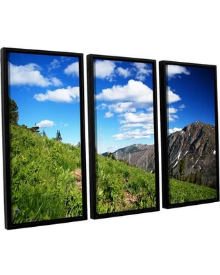 ArtWall Mountain Meadow by Dan Wilson 3 Piece Framed Photographic Print on Canvas Set 0wil012c3654f