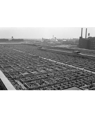 """East Urban Home '1950s Aerial View of Cattle Pens at the Union Stock Yard & Transit Company Chicago Il USA' Photographic Print on Wrapped Canvas ERNI4049 Size: 18"""" H x 26"""" W x 1.5"""" D"""