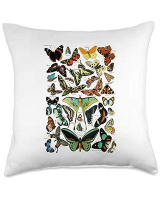 Scientific entomology butterfly Vintage Butterfly Collection Scientific Throw Pillow, 18x18, Multicolor