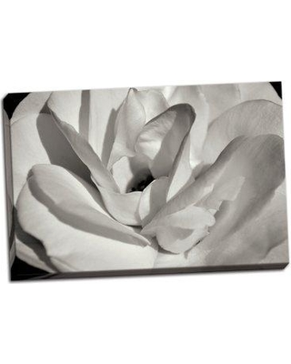 Winston Porter 'Macro Flower I' Photographic Print on Wrapped Canvas BI051614