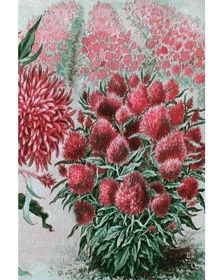 """Marmont Hill 'Wool Flowers 2' Painting Print on Wrapped Canvas MH-FMKIT-217-C- Size: 24"""" H x 16"""" W"""