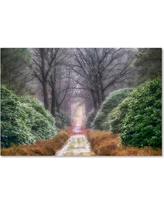 'Rhododendron Lane' by Cora Niele Ready to Hang Canvas Wall Art, Multicolored