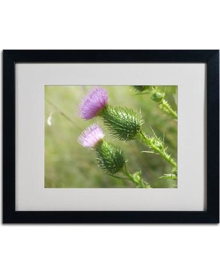 "Trademark Fine Art 'Assorted Intention' Framed Photographic Print on Canvas MF053 Frame Color: Black Size: 16"" H x 20"" W x 0.5"" D"