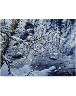 """Trademark Fine Art 'Icy Reflections' Graphic Art Print on Wrapped Canvas ALI30205-CGG Size: 35"""" H x 47"""" W x 2"""" D"""