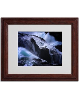 """Trademark Art """"Liquide Illusion"""" by Philippe Sainte-Laudy Framed Photographic Print PSL0168- Size: 11"""" H x 14"""" W x 0.5"""" D Frame: Brown - Beveled"""