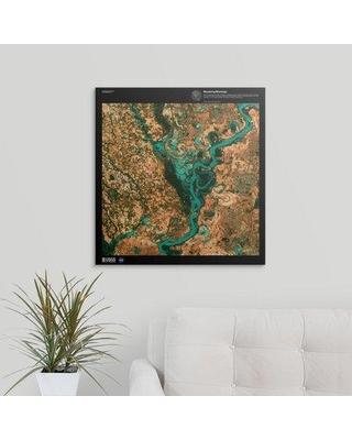 "Great Big Canvas 'Meandering Mississippi - USGS Earth' Graphic Art Print 2405870_1 Size: 24"" H x 23"" W x 1.5"" D Format: Canvas"