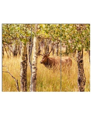 Design Art 'Deer in Thick Forest Grassland' 3 Piece Photographic Print on Wrapped Canvas Set PT12578-3P