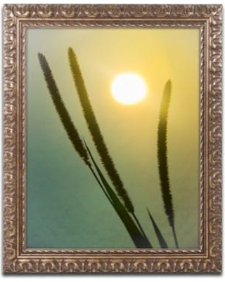 """Trademark Art Silhouettes in Sunset Framed Photographic Print MFG0049-G1114F / MFG0049-G1620F Size: 20"""" H x 16"""" W x 0.5"""" D"""