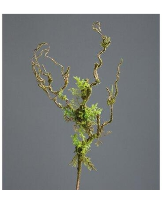 Millwood Pines Liana Spray With Moss and Leaves Foliage Plant W002158588