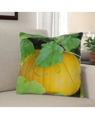 The Holiday Aisle Geraci Pumpkin Indoor/Outdoor Throw Pillow W000300505