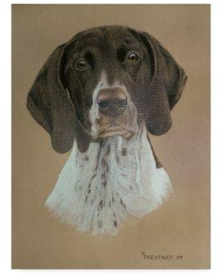 """Trademark Fine Art 'Specled Dog' Graphic Art Print on Wrapped Canvas ALI33152-CGG Size: 24"""" H x 18"""" W x 2"""" D"""