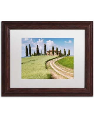 Trademark Fine Art 'Tuscan Classic' Canvas Art by Michael Blanchette Photography, White Matte, Wood Frame
