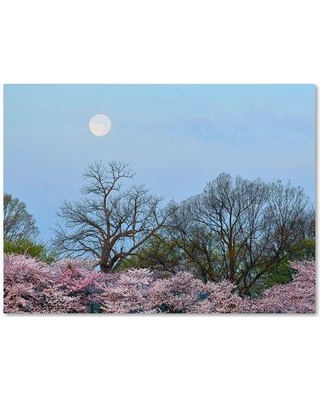 "Trademark Art 'Spring Moon 2' by CATeyes Photographic Print on Wrapped Canvas MZ0377-C Size: 35"" H x 47"" W x 2"" D"