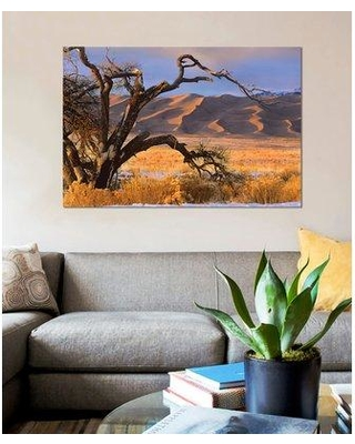 "East Urban Home 'Grasslands and Dunes Great Sand Dunes National Monument Colorado' Graphic Art Print on Canvas ESBH8193 Size: 18"" H x 26"" W x 1.5"" D"
