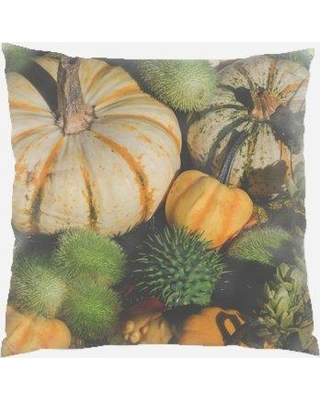 The Holiday Aisle Wydra Halloween Indoor/Outdoor Throw Pillow W001253643